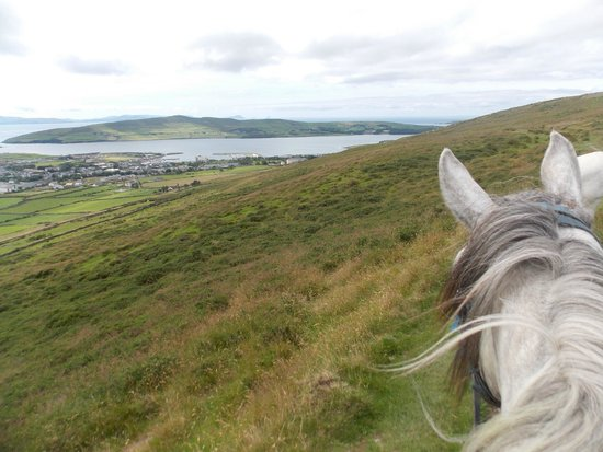 Dingle Horse Riding : View during my ride