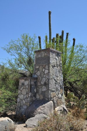 Sabino Canyon: entry