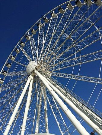 Seattle Great Wheel: Seattle Wheel