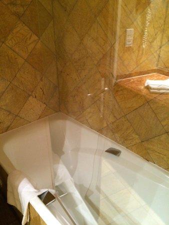 Hôtel Nice Riviera : Amplio pero anticuado baño