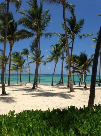 Barcelo Bavaro Palace : Esta praia é a do Hotel, fantastico, mar maravilhoso e o clima é mega tropical, amei.