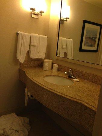 Hilton Garden Inn Tampa Airport Westshore: Bathroo,
