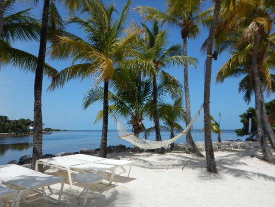 Reef Club Beach Resort The Best Beaches In World