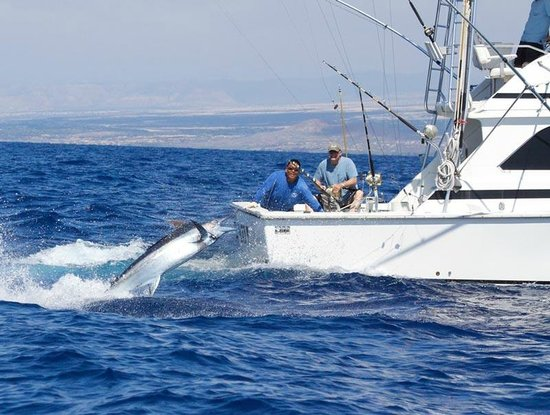 996 pounds of blue marlin carlton mcgrew al mike for Kona fishing charters