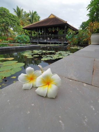 Villa Hoa Su Frangipani: Pool and Pagoda