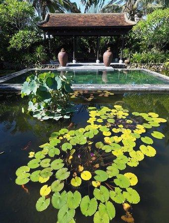 Villa Hoa Su Frangipani: Pool