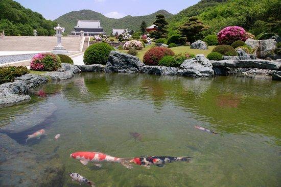 加東市, 兵庫県, 念仏宗無量寿寺 日本庭園