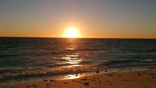 Lady Elliot Island Eco Resort : Sunset