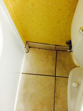 Holiday Inn Express Hotel & Suites: Dirtiest grout ever I seen at Holiday Inn and suites, Woodbridge, VA