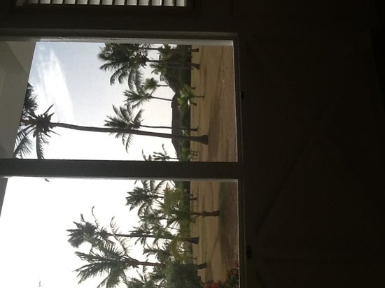 Nisbet Plantation Beach Club: View from room