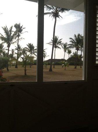 Nisbet Plantation Beach Club : View from room