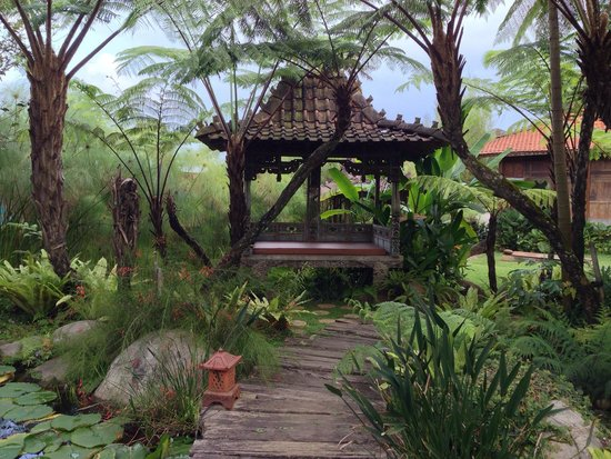 Jadul Village Resort & Spa: Spa area.. Everything here is a peace of heaven with a touch of purple from the lotus.. Heaven o