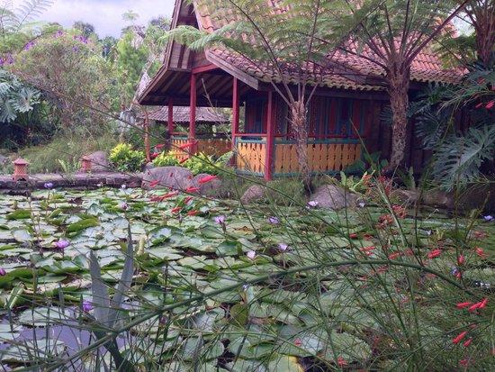 Adarapura Resort & Spa : Having massage in this place is like tasting a little bit of Heaven. Looks like a dream...