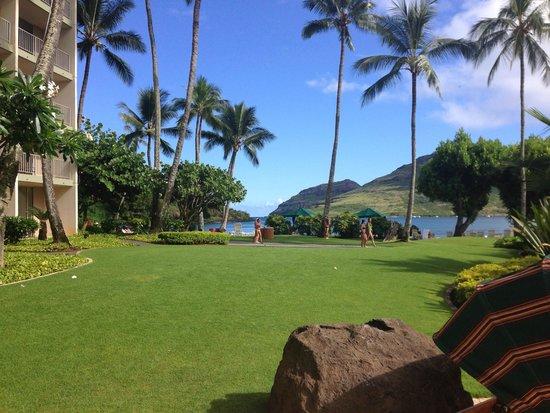 Kaua'i Marriott Resort : Beautiful Kalapaki Beach