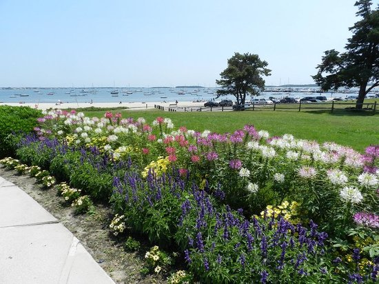 John F. Kennedy Memorial: Flowers around the plaza and Veterans Beach in background