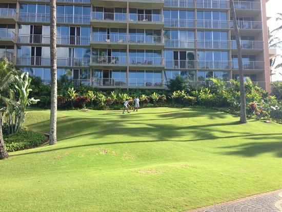 Kaua'i Marriott Resort : View of Ha'upu Tower