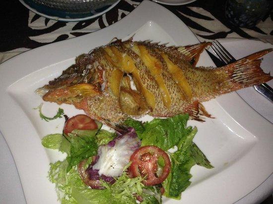Viceroy Riviera Maya: Best fish we've ever eaten - Fresh Fried  Snapper