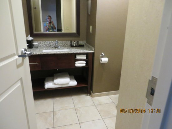 Embassy Suites by Hilton Buffalo: Bathrom