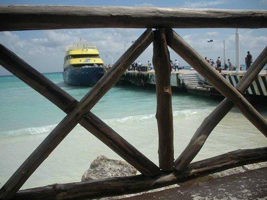 Cozumel Tours By Johann & Sandra : playa del carmen