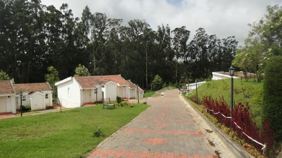 Deccan Park Ooty: View