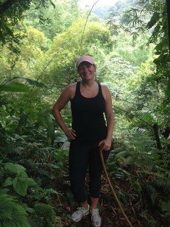 Greg's Safaris: In the rainforest