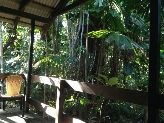 Cape Tribulation Beach House: Front porch of the cabin