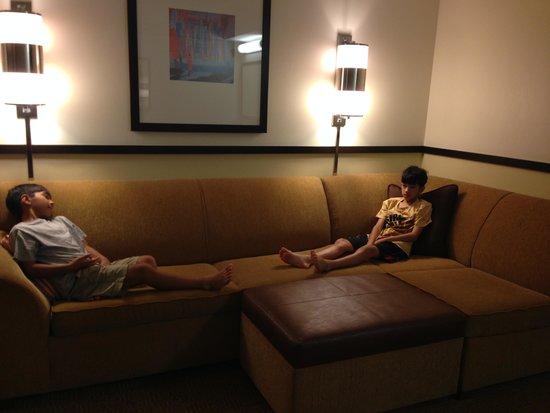 Hyatt Place Sarasota / Bradenton Airport: Sofa