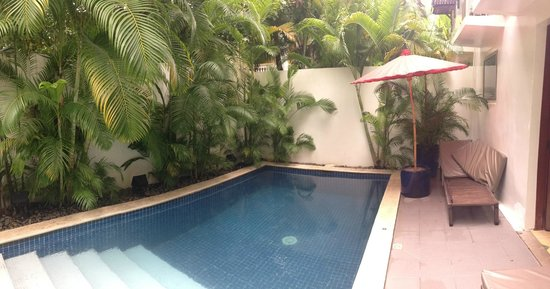 The Pavilion : Private pool