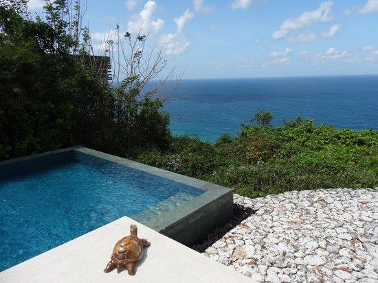 Alila Villas Uluwatu: View from edge of private pool