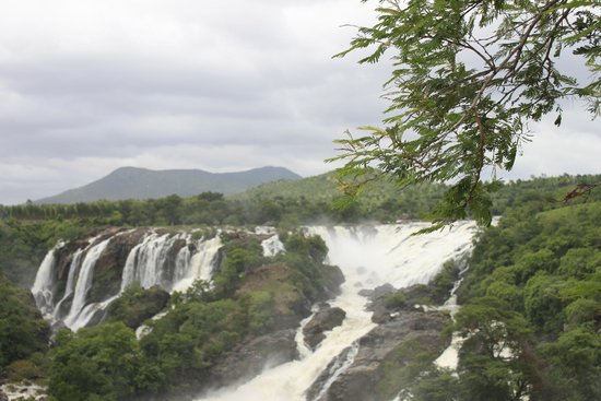 Shivasamudram Falls: Panoramic Fall View