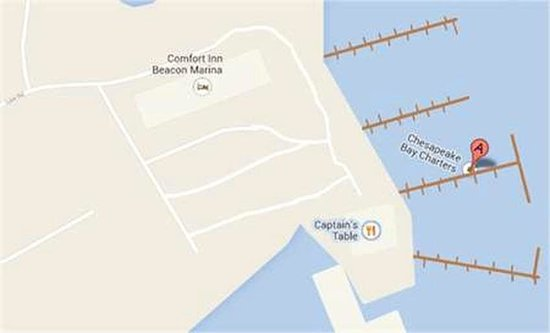 Chesapeake Bay Charters: Map of Beacon Marina