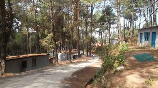 Peaceful Cottage & Cafe du Mont : Road to small town - Nagarkot