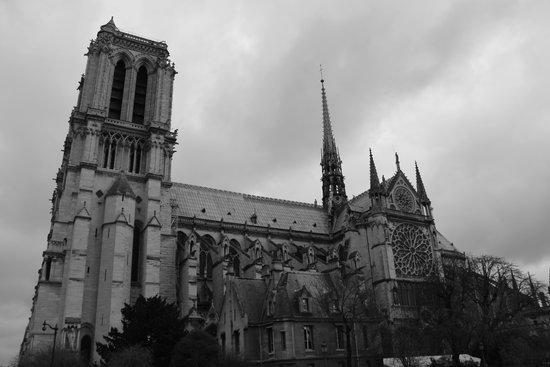 Tours de la Cathedrale Notre-Dame : Notre Dame
