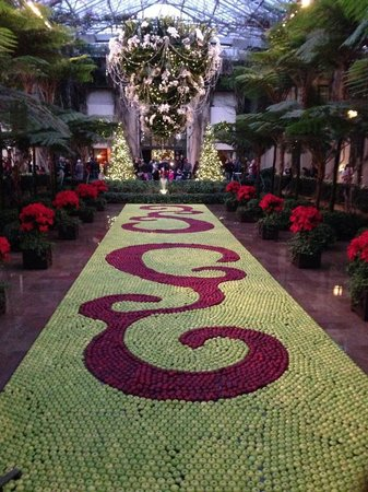 Longwood Gardens: hundreds of floating apples create this christmas mosaic