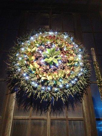 Longwood Gardens: christmas succulent wreath