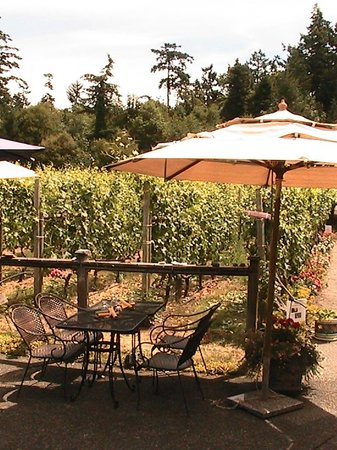 Bistro Muse: Muse winery