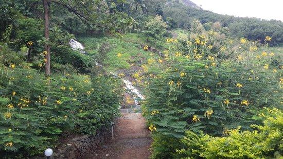 Farm Kamp Kumaragiri - A Wandertrails Stay: Outside view