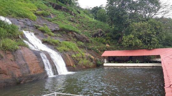 Farm Kamp Kumaragiri - A Wandertrails Stay: pool