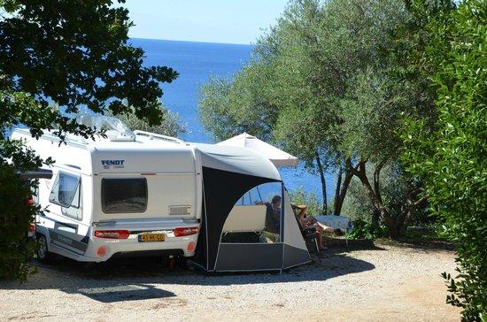 Camping Pod Maslinom: Camp POD MASLINOM - Orasac - Dubrovnik