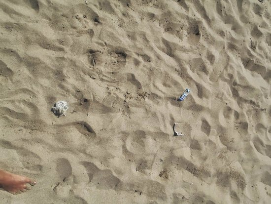 Paloma Garden Hotel: garbage on the beach