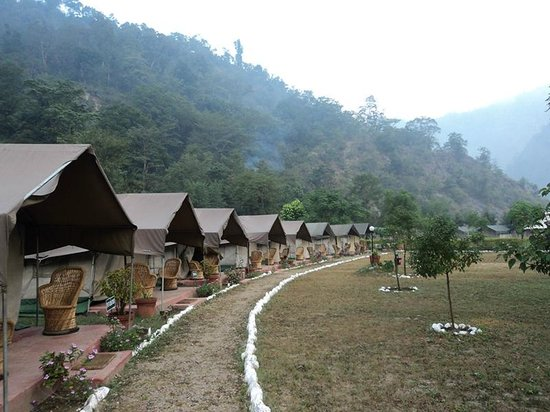 Himalayan Bear Stream Camp: A view of the tented accommodation