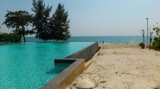 Rayong Marriott Resort & Spa: on of the infinity pool