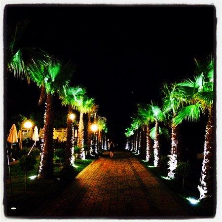 Gural Premier Belek: Palm street