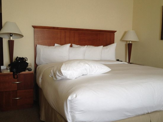 Doubletree by Hilton Hotel Austin : King size bed