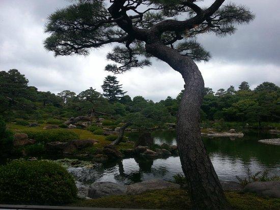 Yuushien Garden: ティールームからの眺め
