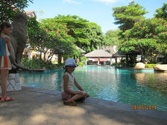 Woodlands Hotel & Resort : большой бассейн