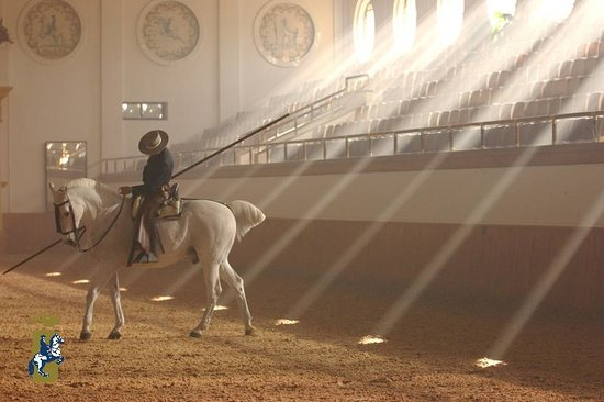 Royal Andalusian School of Equestrian Art (Real Escuela Andaluza del Arte Ecuestre)