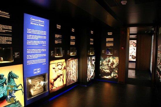 Fundacion Real Escuela Andaluza del Arte Ecuestre: Museo del Arte Ecuestre