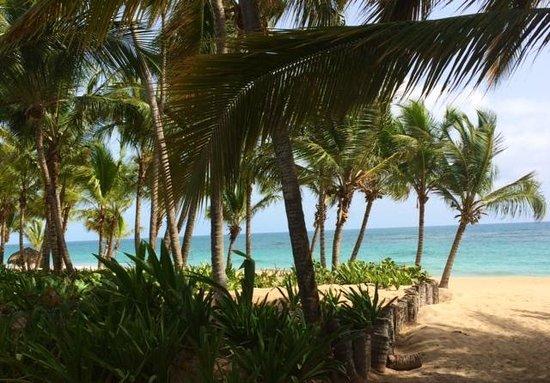 Sivory Punta Cana Boutique Hotel: L'océan