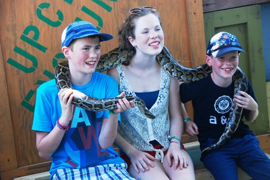 Gatorland: kids overcoming this fear of snakes